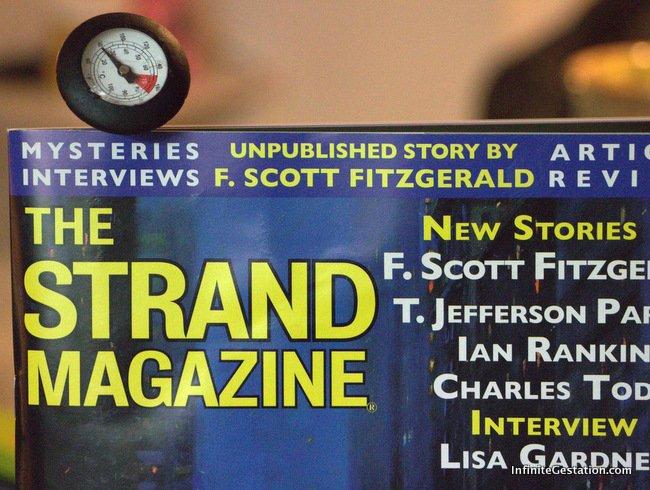 "Fitzgerald's Lost & Found – ""Temperature"" by F. Scott Fitzgerald | Episode 024"